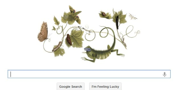 Google Celebrate 366th Anniversary Of Birth Of German Artist-Naturalist Maria Sibylla Merian With A Google Doodle