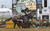 Oxbow Upsets Orb In Preakness