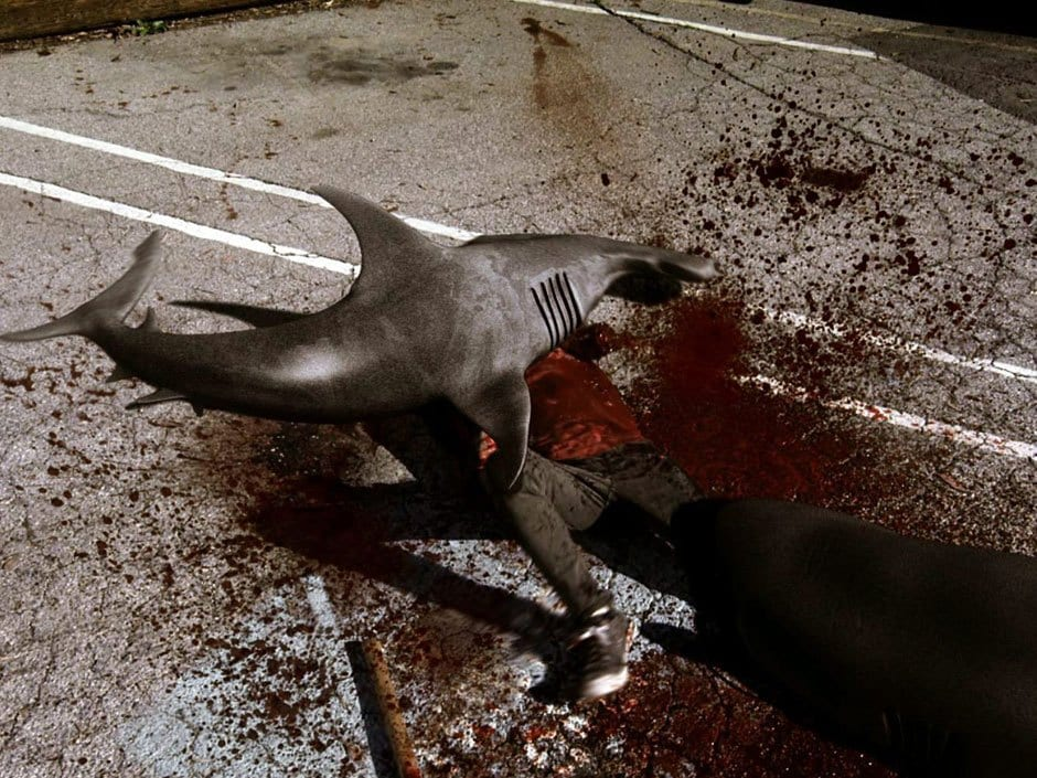 'Sharknado' Dismissed As 'Fantasy' By Real-Life Shark ...