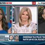 Sharpton Panel Probes Zimmerman's Story Unless Trayvon Had 'X-Ray Vision,' He Wouldn't Have Seen Gun