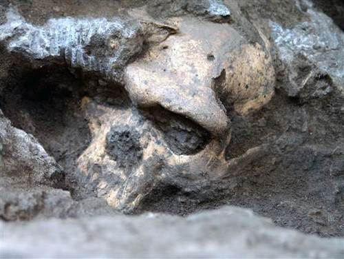 Report- Skull discovery could rewrite early human evolution
