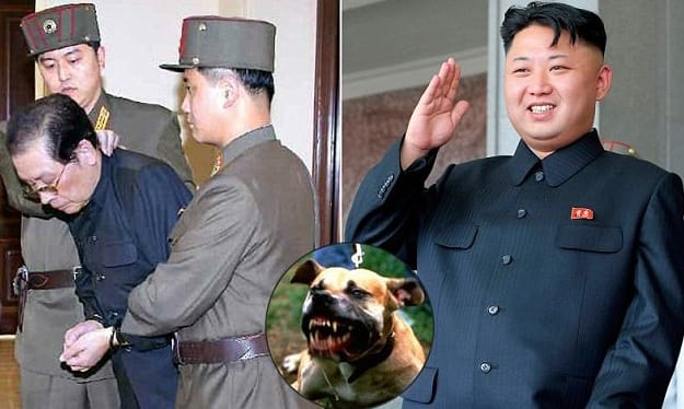 How Kim Jong-Un killed his 'scum' uncle: Dictator had him stripped naked, thrown into a cage and eaten alive by pack of dogs  Read more: http://www.dailymail.co.uk/news/article-2533088/How-Kim-Jong-Un-killed-scum-uncle-Dictator-stripped-naked-thrown-cage-eaten-alive-pack-dogs.html#ixzz2pLHso0ha  Follow us: @MailOnline on Twitter | DailyMail on Facebook