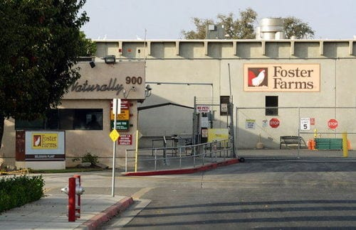 USDA Closes California Foster Farms Plant Over Roach Infestation