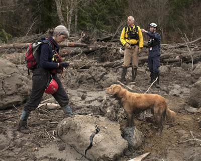 Rescuers recover 2 more bodies at Washington mudslide, believe they've found an additional 8