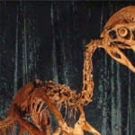 Scientists unveil dinosaur dubbed the 'chicken from hell'