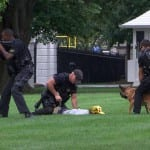 Dogs Catch White House Fence Jumper