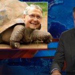 mitch mcconnell tortoise