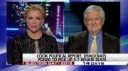 Newt GingrichMegyn Kelly Is 'Fascinated By Sex' [VIDEO