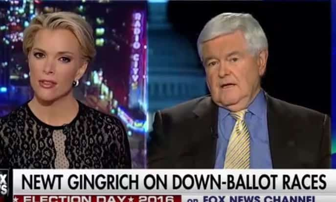 Newt GingrichMegyn Kelly Is 'Fascinated By Sex' [VIDEO]