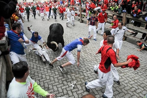 Chicago author who wrote on surviving bull runs, gored by bull
