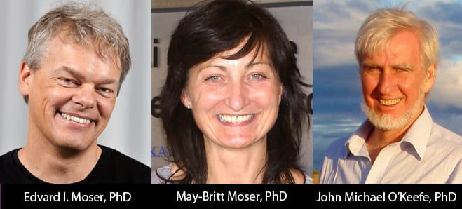 Nobel Prize In Medicine Awarded To Brain Cell Research Neuroscientists